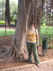 Interesting trees at Ramat Hanadiv