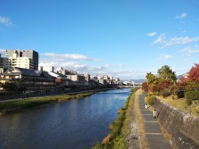 Kamo RIver bank, Kyoto